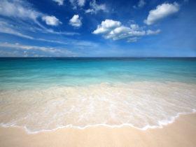 米津玄師の海の幽霊の歌詞は意味が深い!その内容について