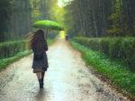 SEKAI NO OWARIのumbrellaの歌詞の意味と曲の魅力について